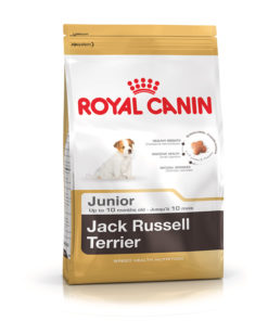 ROYAL CANIN Jack Russell Adult 1